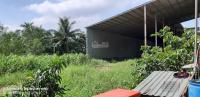 kho xưởng nhà máy sấy lúa trấu mt sông tiền 100m mt sông cái bè 240m