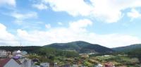 lô đất liền kề view núi rừng thơ mộng đường an sơn p 4 đà lạt đầu tư xây khách sạn nhà nghỉ