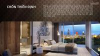 bán căn hộ 3 phòng ngủ serenity sky villa quận 3 diện tích 243m2