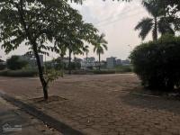 bán đất 31ha trâu quỳ 208m2 hướng đông nam mặt tiền 10m giá 895 tỷ lh 0981221622