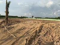 bán đất cho công ty 1500 hđnt rõ ràng đất long thành 9trm2 ck 8 đã san lấp mặt bằng