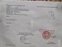 bán đất đấu giá đan kim liên nghĩa văn giang hưng yên