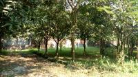 bán đất tc lương sơn hòa bình 11ha 20m mặt đường xóm làm trang trại nghỉ dưng giá rẻ 0962792687