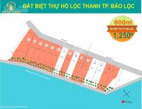 bán l đất biệt thự view hồ lộc thanh 550m2 chỉ 600tr tặng 3 chỉ vàng miễn tiếp môi giới cần gấp
