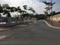 bán đất đấu giá voi phục trâu quỳ 75 m2 mt 5m đường nhựa rộng có vỉa hè giá đầu tư