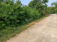cần chuyển nhượng lô đất 6100m2 đất làm trang trại nhà vườn khu nghỉ dưng tại yên bài ba vì hn
