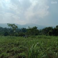 chính chủ cần bán 4500m2 đất nghỉ dưng thế đất cao view đồng lúa yên bài giá hơn 300trsào