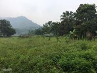 bán đất gấp khuôn viên hoàn thiện dt 3200m2 thực tế sử dụng 3600m2 tại xã yên bài ba vì hn