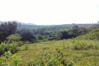 đất làm trang trại nhà vườn quốc oai