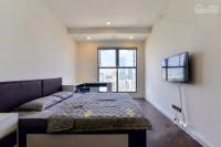 cho thuê căn hộ saigon royal 2pn view bitexco nội thất cao cấp