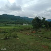 1541m2 nghỉ dưng view cánh đồng đồi núi đẹp xã yên bài giá 300trsào