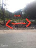 bán đất mặt tiền đường nhựa hl407 10x95m tân hiệp tx tân uyên bình dương