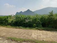 cần bán nhà đất 1000m2 đã có khuôn viên nhà vườn hoàn thiện giá đầu tư tại cư yên lương sơn hb