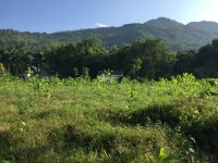 cần bán lô đất 5200m2 đã có tường bao xung quanh vị trí đẹp giá đầu tư tại hợp hòa lương sơn hb