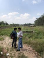 đất nền có thể xây kho nhà xưởng biệt thự vườn nguyễn thị rành