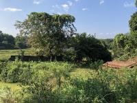 cần bán 2100m2 có aoview nhìn ra cánh đồng thoáng mátđã xây bờ bao kiên cố tại lương sơngiá rẻ