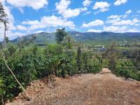 11000m2 view đỉnh đồi nhìn ra tp bảo lộc mặt đường đất 6m