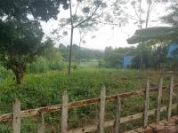 bán 1030m2 đất tại yên bài ba vì mặt tiền 30m view cánh đồng mặt thoáng đường rộng giá rẻ