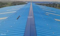Cần thuê mái nhà xưởng để đầu tư điện mặt trời - 8000m2 trở lên