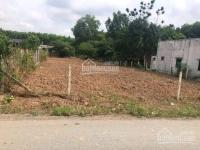 chuyển về sài gòn cần bán hết tài sản gồm 2 lô đất dt 1416m2 giá 570 triệu ngay trường học