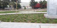 đất nền sổ đỏ icon central pháp lý hoàn chỉnhhạ tầng hoàn thiệncông viên đã hiện hữu 0929283734