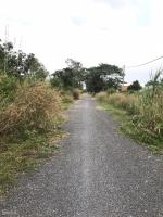 cần bán đất 2 mặt tiền đường bến súc xã an phú củ chi