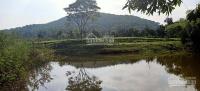 chủ cần bán gấp đất nghỉ dưng 25000m2 giáp hồ đồng mô cực đẹp 7 tỷ