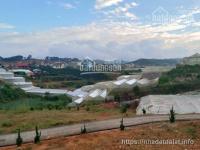 bán đất nở hậu tại khu đô thị langbiang lạc dương