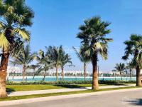 bán liền kề sao biển 2 vinhomes ocean park s 90 m2 view vườn hoa siêu đẹp giá chỉ 93 tỷ