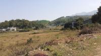 21ha đất sinh thái siêu vip view cánh đồng đẹp miễn chê tại lương sơn hòa bình cần bán gấp