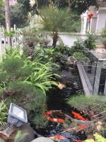 bán bt hoa phượng 350m2 hoàn thiện hiện đại có sông nội khu có hầm giá 31 tỷ