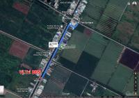 trí bđs đất 20mx62m 1265m2 7685m2 odt 4965m2 cnl mặt tiền đường kênh a gần trần đại nghĩa