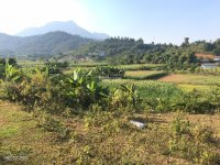 5000m đất xóm bài yên bài ba vì hà nội thích hợp làm nhà vườn nghỉ dưng lh 0932386883