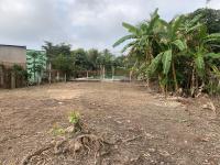bán đất biệt thự vườn lộ nhựa 65m thường thạnh cái răng 2tr5m2