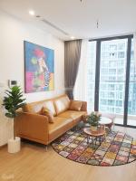 cho thuê căn hộ cao cấp trần duy hưng dcapitale đối diện big c giá từ 10 triệuth lh 0984131618