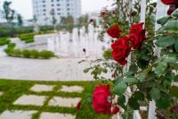 cần bán gấp liền kề tại eden rose giá 106 tỷ 0916033394