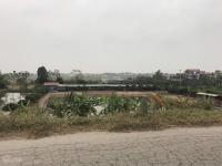 chuyên đất dự án khu sinh thái cẩm đình phúc thọ dt từ 1000m2 trở lên