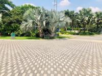 độc quyền chuyển nhượng phân phối dự án phố đông village sol villas lh 0902 746 319