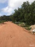 bán 20000m2 có thổ cư đất mặt tiền đường đi quốc tế an thới phú quốc đất sạch sỏ đỏ