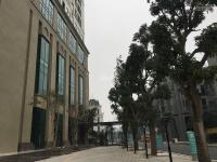 chủ đầu tư cho thuê sàn thương mại roman plaza 0949767086