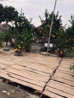 bán mảnh đất đẹp vị trí cũng đẹp trong khu đô thị 31ha trâu quỳ gia lâm lh 0981221486