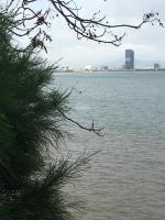 chính chủ cần sang nhượng nhanh căn hộ tms view trực diện biển pkd 0935410206