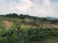 chỉ 12 tỉ cho 2354m2 đất thổ cư sổ đỏ làm trang trại nghỉ dưng xã ngọc thanh phúc yên vĩnh phúc
