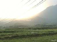 cần bán lô đất 1469m2 300m2 đất ở thôn muồng voi vân hoà ba vì hà nội