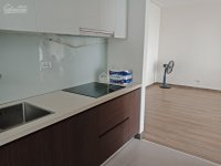 chính chủ cho thuê căn hộ northern diamond 100m2 2pn 2wc đủ đồ giá 12trth lh 0941599868