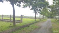bán đất nền biệt thự sinh thái cẩm đình phúc thọ 1750m2 giá 4 triệum2 lh o985575386