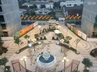 bán shophouse bình minh garden đức giang long biên 2 mặt tiền ck 12 ls 0 24th lh 0985702246