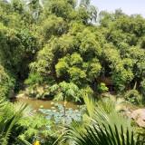 bán khu sinh thái biệt thự homestay tại lương sơn hòa bình