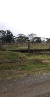 chính chủ bán đất sinh thái cẩm đình lô g1x g16x h14 view hồ view sông lh 0981173786