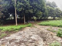 cần bán 3114m2 đất làm trang trại nhà vườn khu nghỉ dưng cuối tuần tại xã liên sơn lương sơn hb